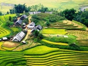 Meilleure période pour voyager au Vietnam