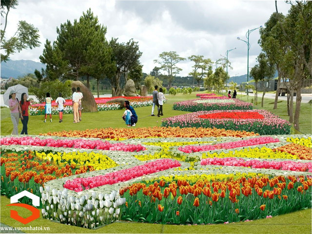 DaLat_Jardin de fleurs